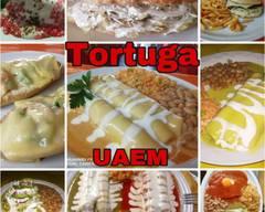Tortuga ( Uaem )