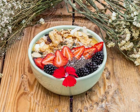 Iogurte Floresta com Frutas